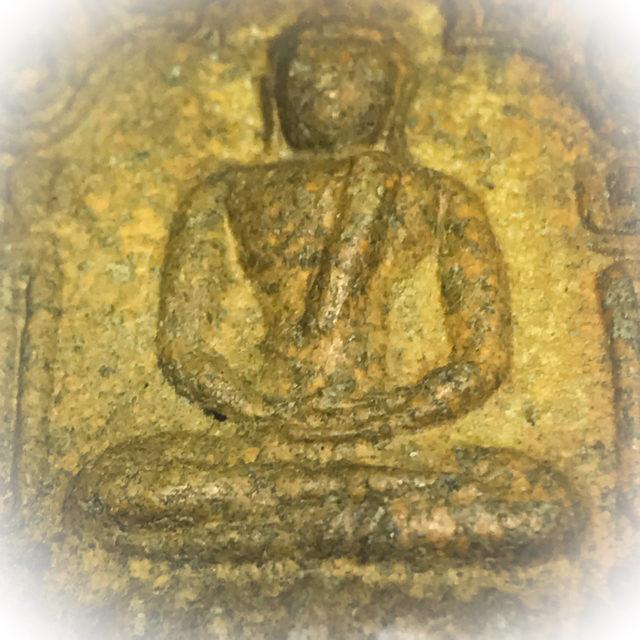 Closeup Macro Image iof Khun Phaen 15 Pim Yai Niyom Nuea Hlueang Luang Phu Tim Issarigo